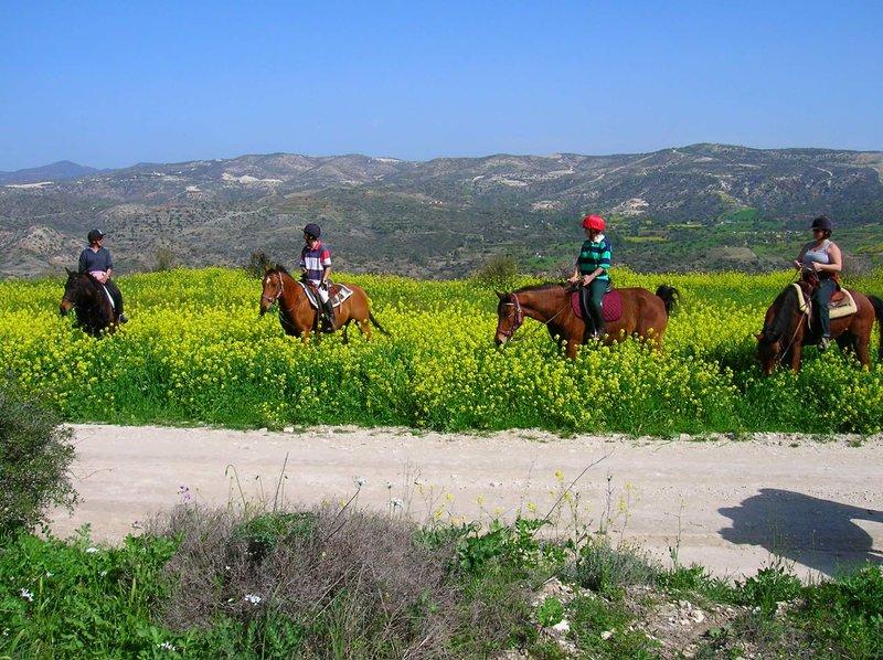 Traditional Cyprus Villages Tochni, Kalavasos, Psematismenos 24