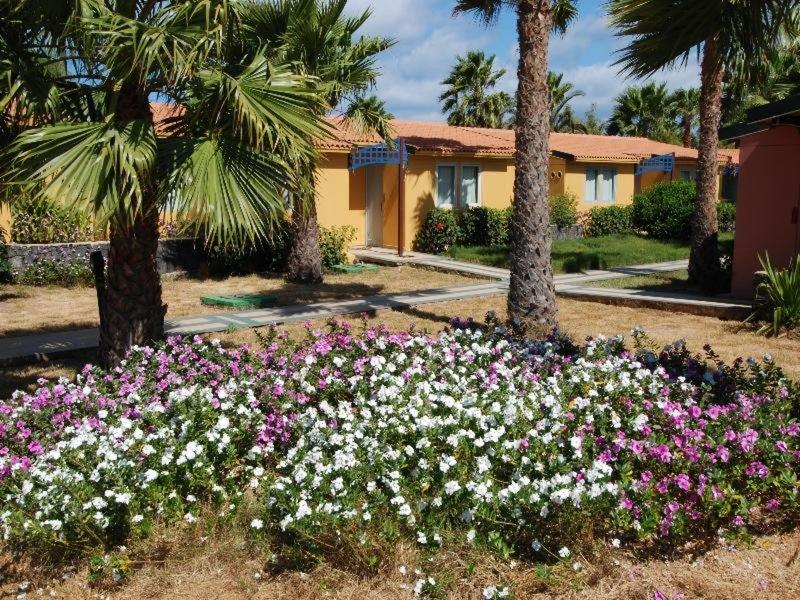 VOI Vila do Farol Resort 4*, Santa Maria ,Kapverdy