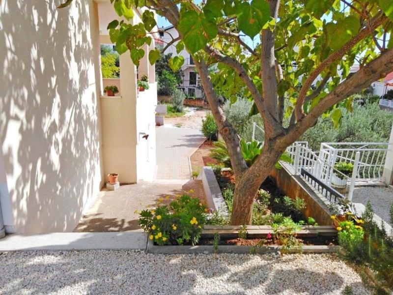 Apartments & Rooms Lijepa - 7