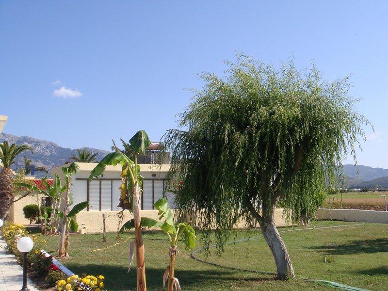 Oasis Stuidos & Apartements