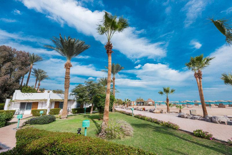 Shams Safaga Resort 13