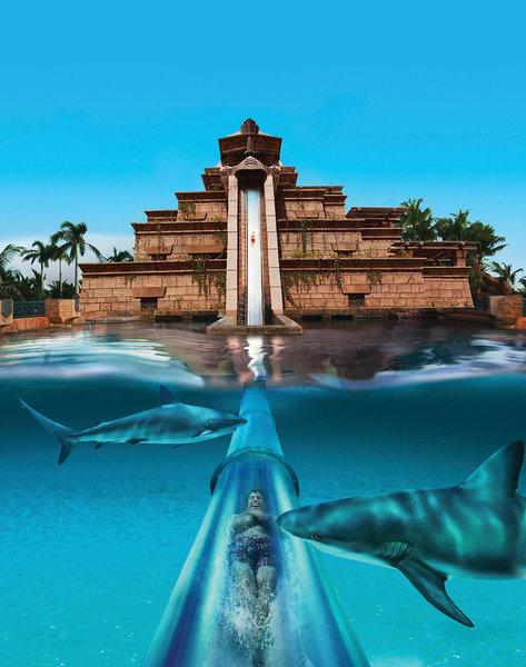 Atlantis - The Palm 8